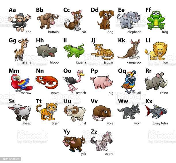 Animal alphabet chart set vector id1029798612?b=1&k=6&m=1029798612&s=612x612&h=ccd nk p1jluedrq7girkbzmbtkxnplc h7kb3wvjus=