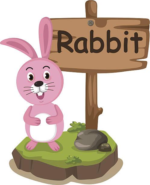 animal alphabet letter r for rabbit vector art illustration
