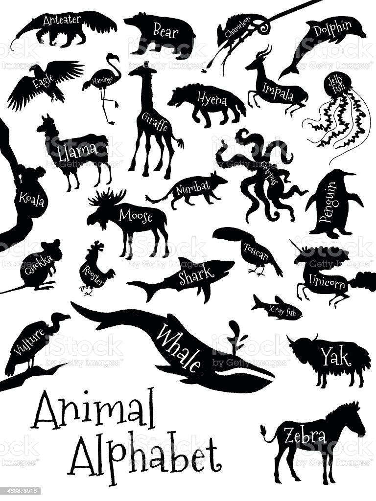 お子様用の動物のアルファベットのポスター動物シルエットに名前と の
