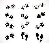 Animal and human paw and footprint set vector