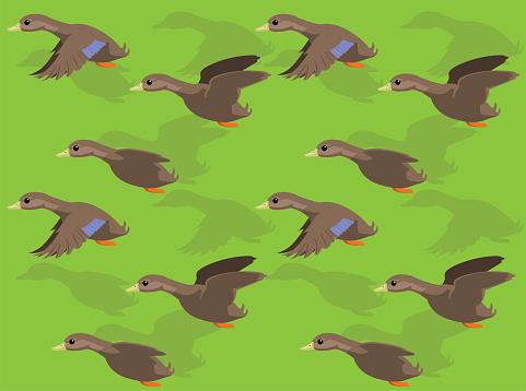 Animal Animation American Black Duck Cartoon Vector Seamless Wallpaper