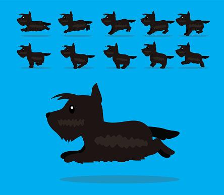 Animal Animation Sequence Dog Scottish Terrier Cartoon Vector