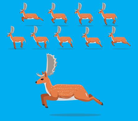 Animal Animation Sequence Fallow Deer Cartoon Vector