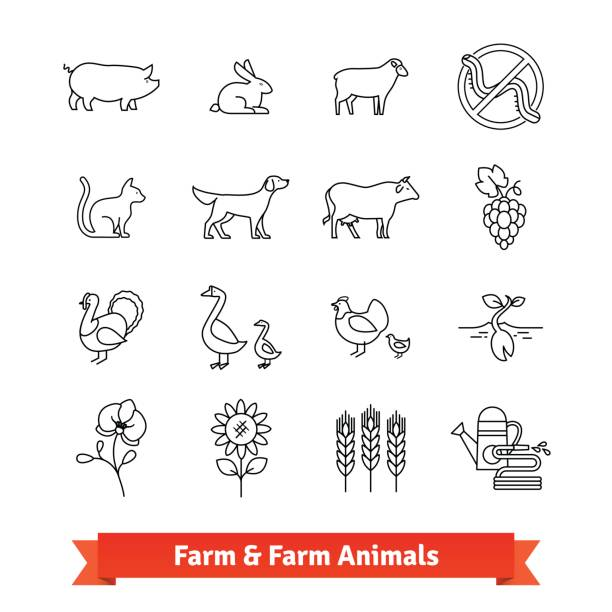 Animal breeding and farming thin line art icons vector art illustration