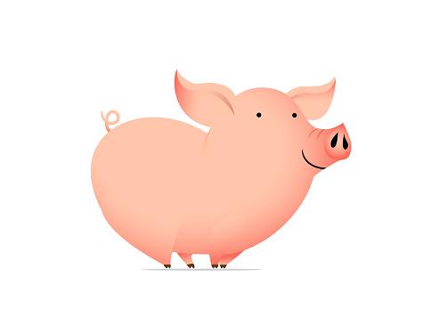 Animal cartoon character - funny pig.