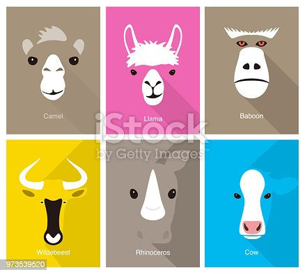 animal cartoon face, flat face icon, vector