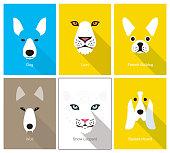 istock animal cartoon face, flat face icon, vector illustration 973539650
