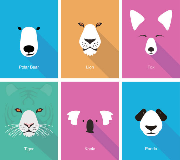 animal cartoon face, flat face icon vector - koala stock illustrations