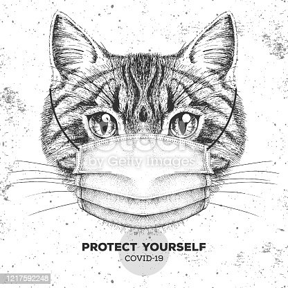 Animal cat wearing face medical mask. Covid-19 protection methods. Coronavirus Quarantine Warning. Vector illustration