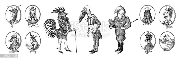 Animal characters set. Bald eagle Rooster Stork Walrus Crocodile Goat Dog Donkey Alpaca Llama Deer. Hand drawn portrait. Engraved monochrome sketch for card, label or tattoo. Hipster Anthropomorphism