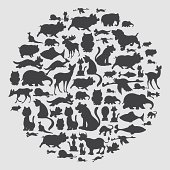 vector illustration - animal circle pattern