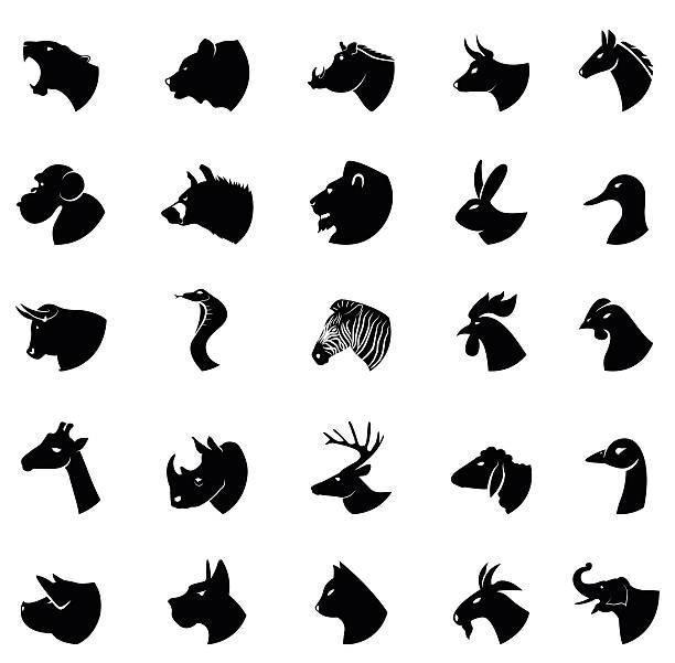 stockillustraties, clipart, cartoons en iconen met animal collection - hyena
