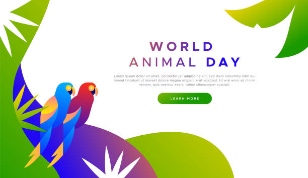 Animal day landing page template of exotic birds World animal day landing web page background template of exotic tropical macaw birds in modern flat vibrant gradient style. Endangered species protection or wildlife conservation concept for online campaign. amazon stock illustrations