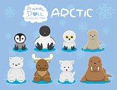 Animal Dolls Arctic Set Cartoon Vector Illustration