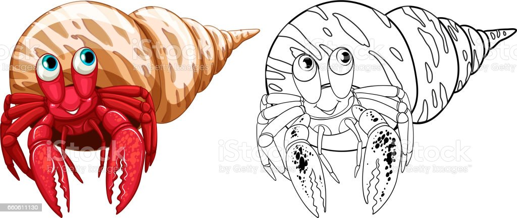 Animal doodle outline for hermit crabs royalty-free animal doodle outline for hermit crabs stock vector art & more images of animal