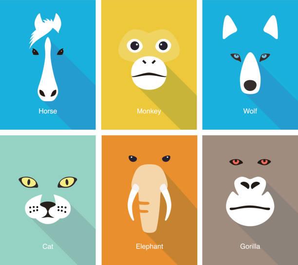 animal face flat icon set design, vector illustration - monkey stock illustrations