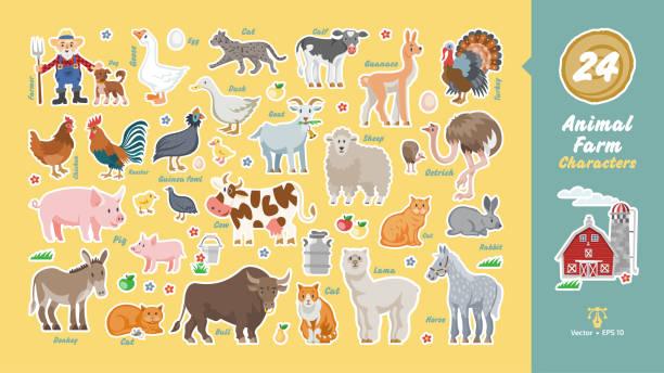 ilustrações de stock, clip art, desenhos animados e ícones de animal farm characters set with farmer, dog, barn, cow, sheep, donkey, pig, chicken, rooster, duck, turkey, goat, bull, calf, ostrich, rabbits, cats, goose, lama, horse, guinea fowl funny collection. - lata comida gato