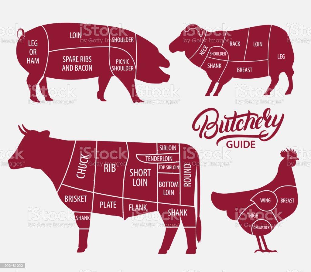 Ilustración de Conjunto De Animales De Granja Corte De Carne De Res ...