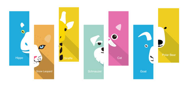 animal flat face icon, vector illustration animal flat face icon, vector illustration animal stock illustrations