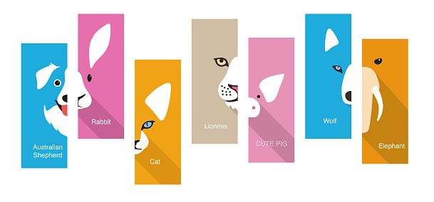 animal flat face icon, vector illustration