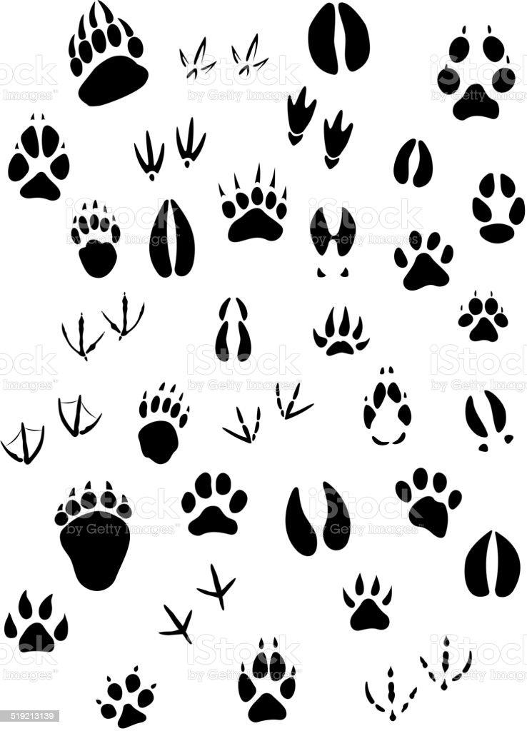 Animal footpints set vector art illustration