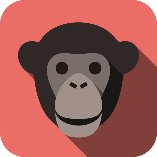 animal gorilla Gesicht flache Symbol – Vektorgrafik