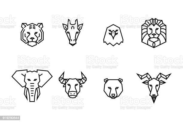 Animal heads icons vector geometric illustrations of wild life vector id919290544?b=1&k=6&m=919290544&s=612x612&h=n2tfrxzcr5foisysk1cfa5tnrogez8xvm2muclk 8p8=