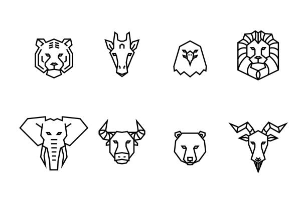 8 animal heads icons. vector geometric illustrations of wild life animals. - lion stock illustrations, clip art, cartoons, & icons