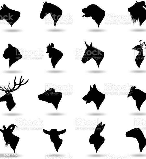 Animal heads vector id165911260?b=1&k=6&m=165911260&s=612x612&h=stn2fkdnsanwggiyhjwtty8bb4 45yn svqwlbss7nm=