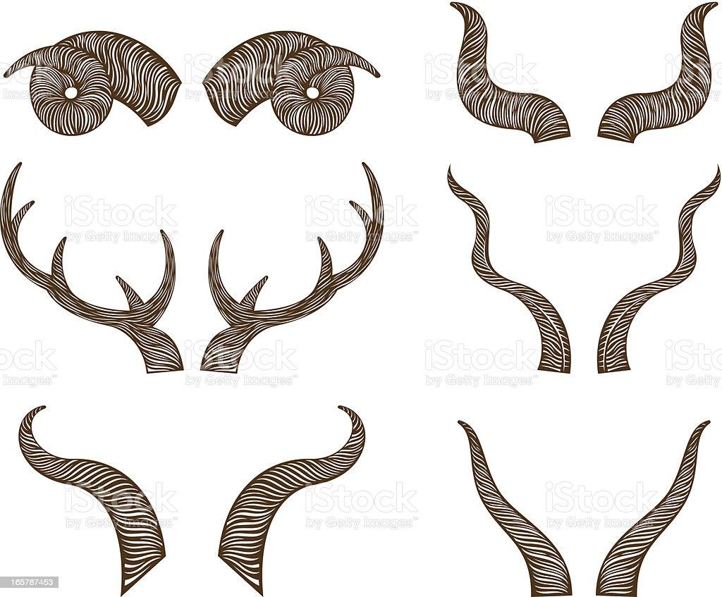animal horns vector art illustration
