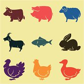 Animal husbandry icons in different colors