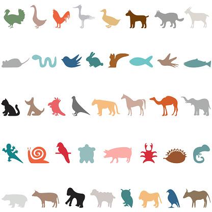 animal icons set