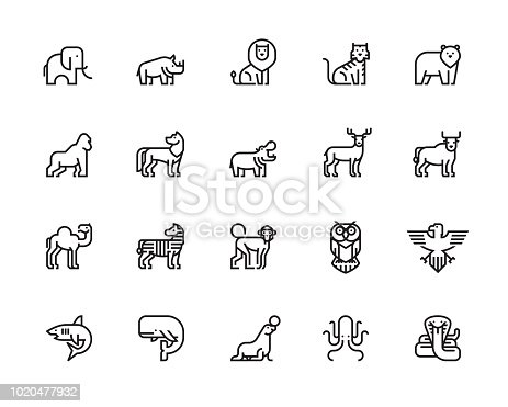 Animals, Wildlife, Sea Animals, Zoo, Animal Character, Icons, Vector, Illustration