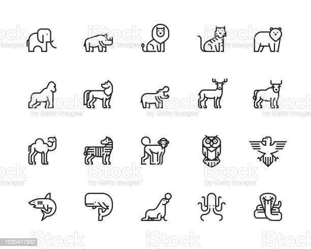 Animal icons vector id1020477932?b=1&k=6&m=1020477932&s=612x612&h=lpsxriifzaa j5s0uo5mxrqypifp8rnhpsnqgydqexm=