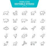 Polar Bear, Monkey, Gorilla, Animal, Seafood, Editable Stroke Icon Set