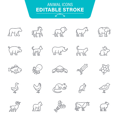 Animal Icons clipart