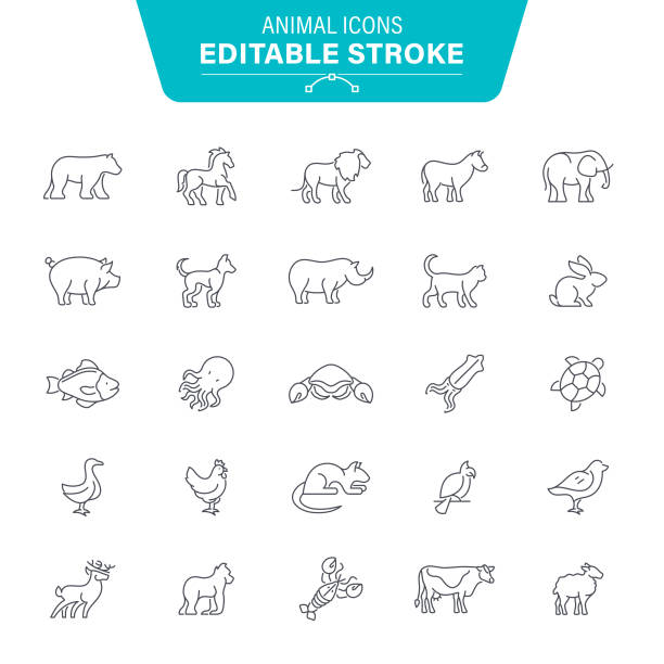 Animal Icons Polar Bear, Monkey, Gorilla, Animal, Seafood, Editable Stroke Icon Set rabbit animal stock illustrations