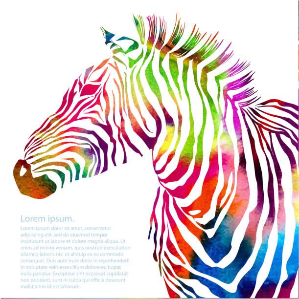 tierische illustration von aquarell zebra-silhouette - zebras stock-grafiken, -clipart, -cartoons und -symbole