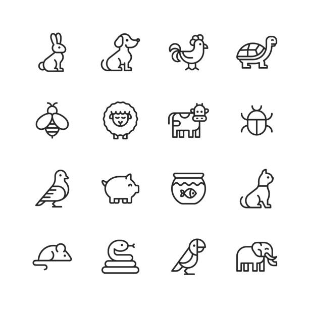 Animal Line Icons. Editable Stroke. Pixel Perfect. For Mobile and Web. Contains such icons as Rabbit, Bunny, Dog, Chicken, Turtle, Bee, Sheep, Cow, Pig, Cat, Snake, Mouse, Elephant, Parrot. 16 Animal Outline Icons. rabbit animal stock illustrations