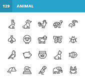 20 Animal Outline Icons. Animal, Pet, Wild Animal, Farm Animal, Mammal, Amphibian, Reptile, Bird, Zoo, Veterinary, Wildlife, Rabbit, Bunny, Dog, Chicken, Turtle, Flamingo, Bee, Insect, Sheep, Cow, Butterfly, Cockroach, Dove, Pig, Fish, Cat, Mouse, Rat, Snake, Parrot, Elephant.