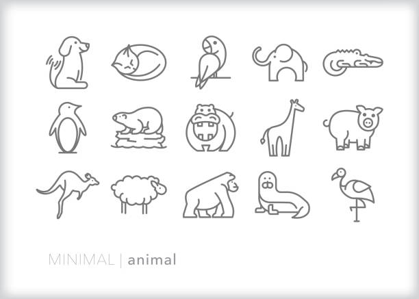 Animal line icons of farm animals, pets, zoo animals, mammals and birds Set of 15 gray animal line icons of common animals including dog, cat, elephant, parrot, alligator, penguin polar bear, hippo, giraffe, pig, sheep, kangaroo, gorilla, seal alligator stock illustrations