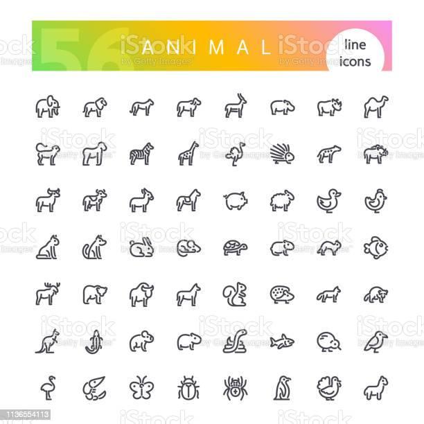Animal line icons set vector id1136554113?b=1&k=6&m=1136554113&s=612x612&h=ggyqqo3uu5avt ssrpyhejkubt7u6docm3ambxmtje8=