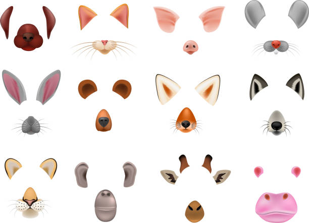Animal mask vector animalistic masking face of wild characters bear wolf rabbit and cat or dog on masquerade illustration set of carnival masked costume monkey masquer isolated on white background Animal mask vector animalistic masking face of wild characters bear wolf rabbit and cat or dog on masquerade illustration set of carnival masked costume monkey masquer isolated on white background. halloween cat stock illustrations