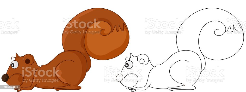 Animal outline for squirrel royalty-free animal outline for squirrel stock vector art & more images of animal