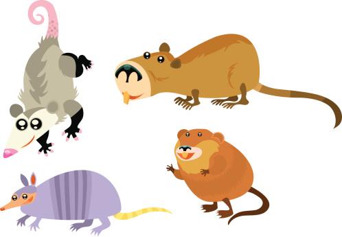 Animal Page
