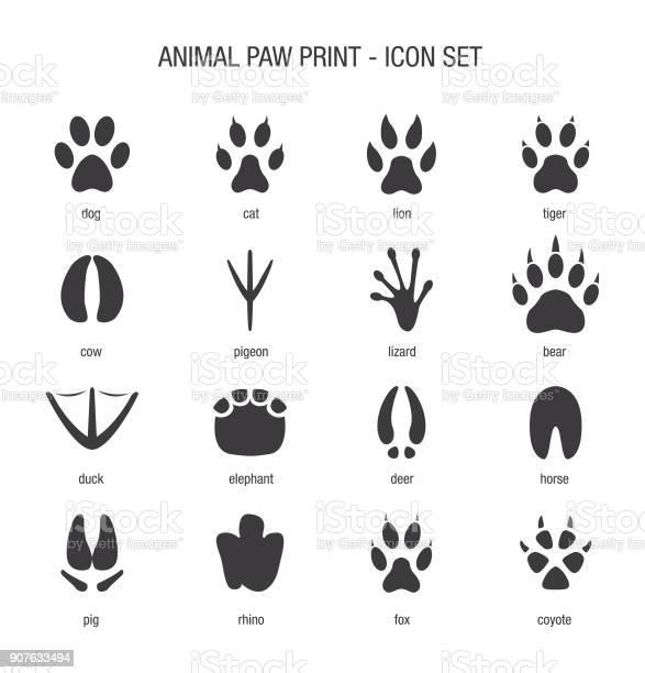 Animal paw print icon set vector id907633494?b=1&k=6&m=907633494&s=612x612&h=z4nrbxktlqdslqfxlj fzu8ltp8r4pvonggnzjfzcve=
