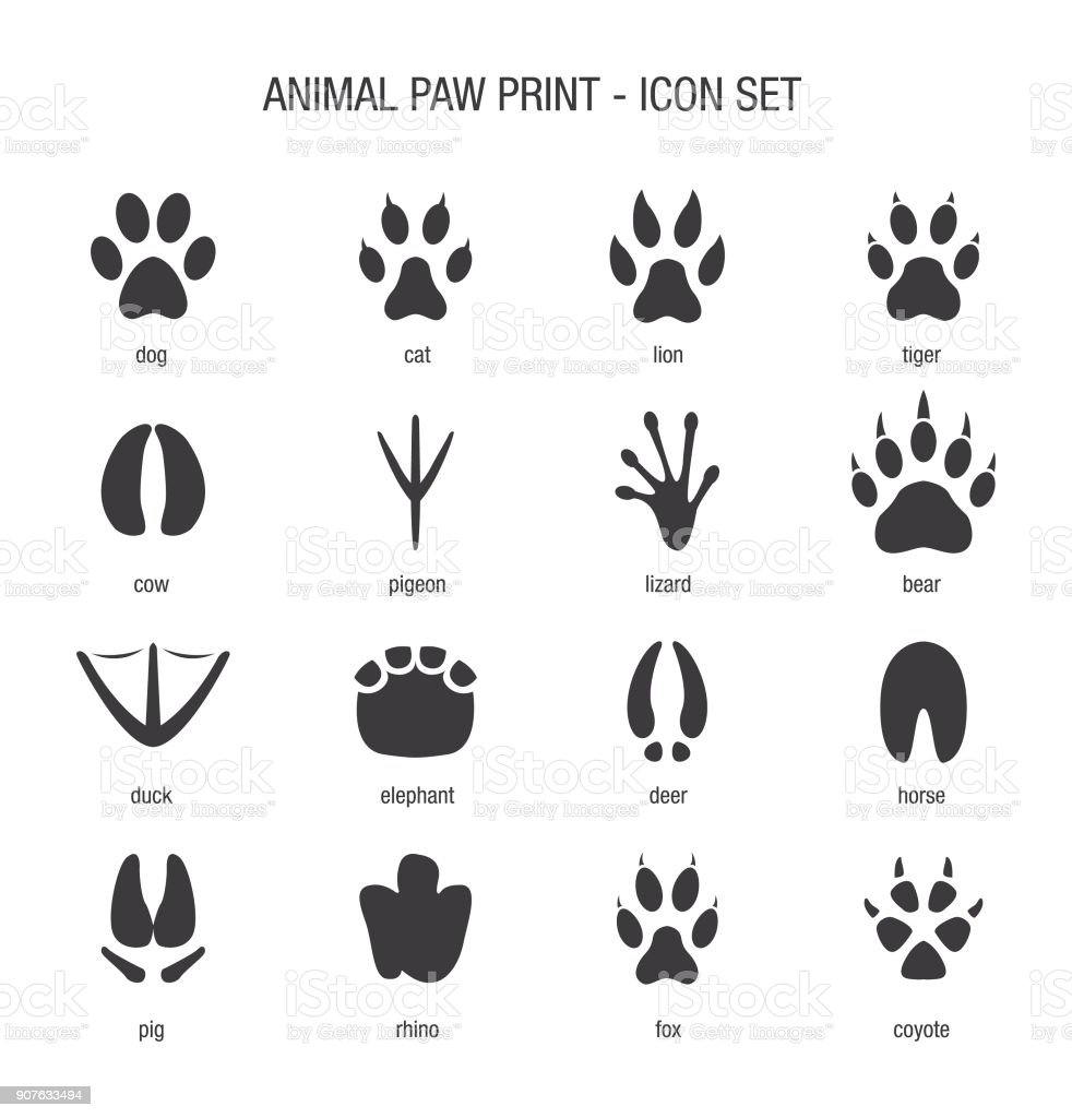 Animal Paw Print Icon Set vector art illustration