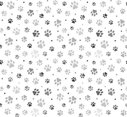Animal Paw Seamless Pattern stock illustration