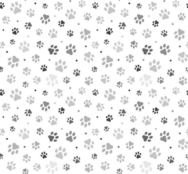 ilustraciones, imágenes clip art, dibujos animados e iconos de stock de ilustración de stock de animal paw seamless pattern - mascota