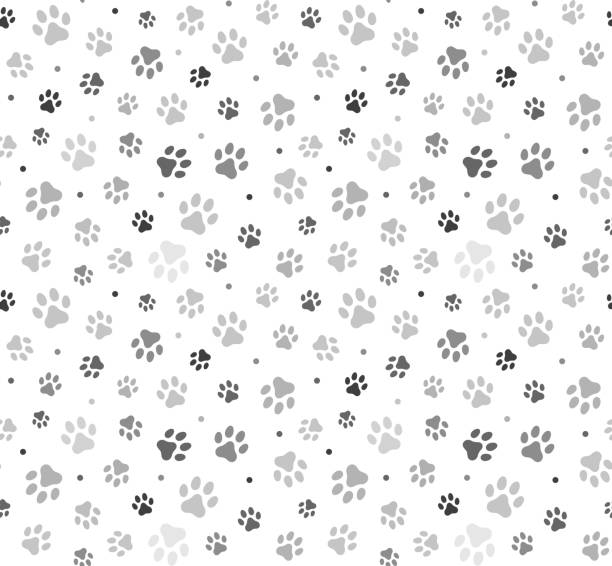animal paw seamless pattern stock illustration - wzory i tła stock illustrations